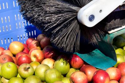 spazzole per rimuovere residui in industria alimentare