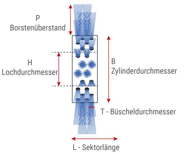 Standard zylindrische modulare Bürste