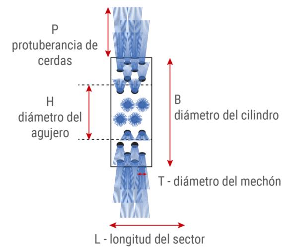 Cepillo modular cilíndrico estándar